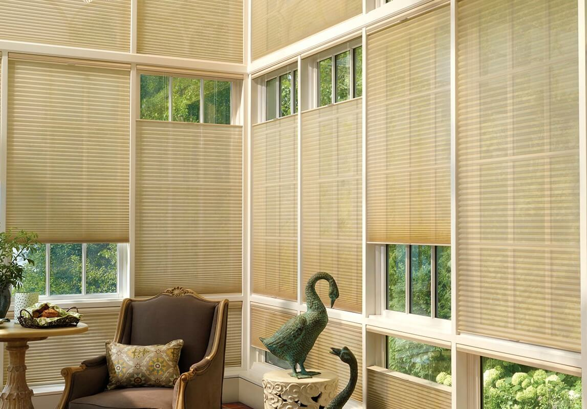 Top Down Bottom Up Window Blinds