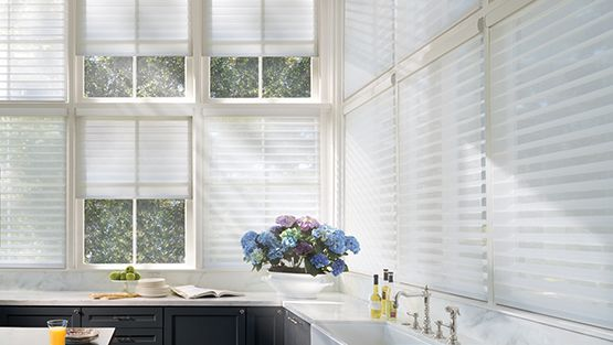 Window blinds and shades for Light control and privacy at the window